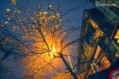 Hà Nội đêm mùa đông - Cao Anh Tuan