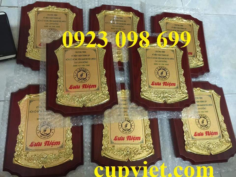 biểu trưng vinh danh,kỷ niệm chương gỗ đồng, giả đồng, vinh danh làm quà tặng