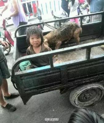 Em bé bị ngược đãi sống chung với lợn, 7 tuổi vẫn chưa biết nói