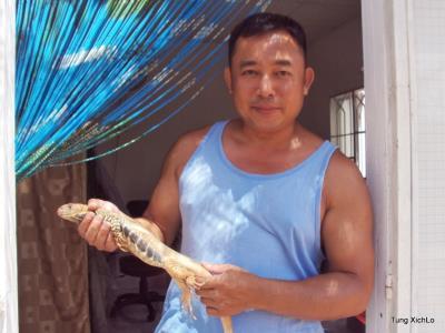 Con dông sa mạc Ninh Thuận và Bình Thuận