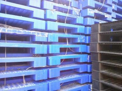 Chuyên cung cấp các loại Pallet nhựa kê kho, kê hàng,.... giao hàng tận nơi 0905681595