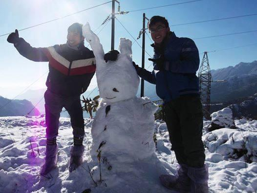 Tình hình chim lợn báo về sapa đã có tuyết !