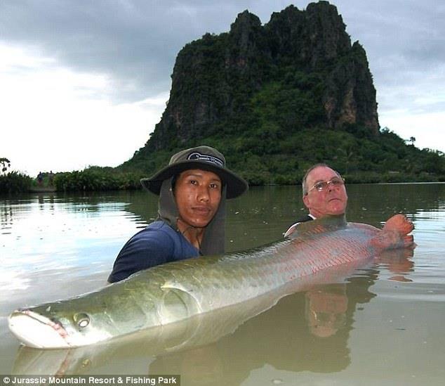 Bí mật về hồ nước thường xuyên bắt được loài cá chép khổng lồ