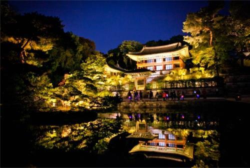 Tour du lịch cung điện Changdeokgung  vào ban đêm
