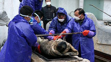 Cận cảnh xác ướp bí ẩn 700 năm trong quan tài ngâm nước màu nâu