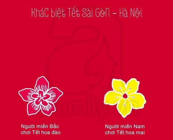 Sự khác biệt giữa Sài Gòn - Hà Nội (Part 1)