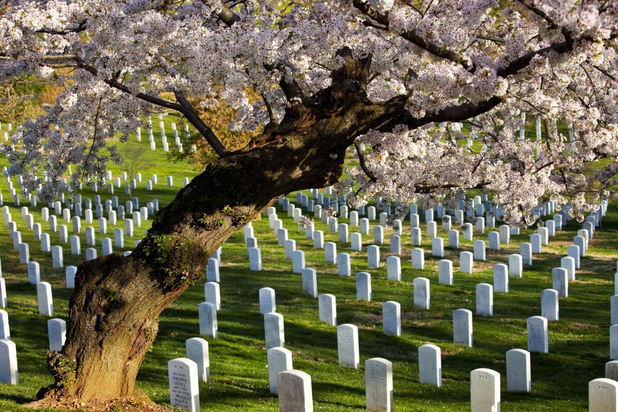 12... nghĩa trang đẹp nhất thế giới